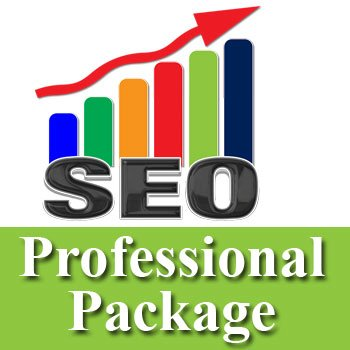 seo-professional-package