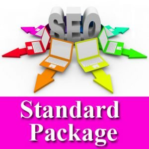 seo-standard-package